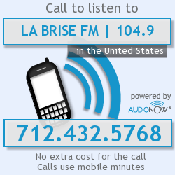Audionow Access number